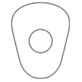 shape03-Maxillary_Canine